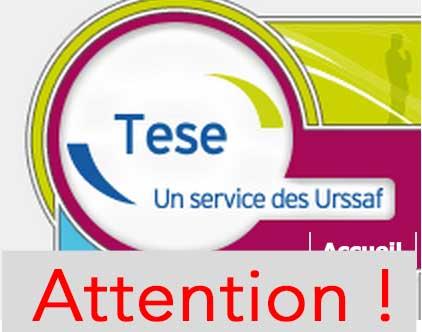 TESE : mise en garde des Experts-Comptables !